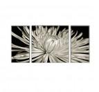 Tableau Décoratif Fleur Blanche