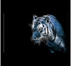 Tableau déco esprit du tigre avec des couleurs bleues et noires