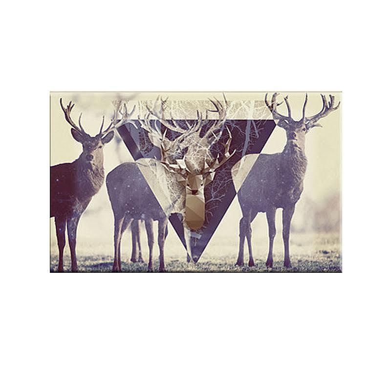 Trendy Deer Modern Art Print Artwall And Co