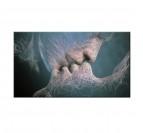 Tableau Design Invicible Kiss