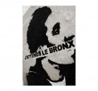 Photo d'Art Moderne J'attends le Bronx