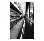 Photo d'Art Moderne J'attends le Bronx