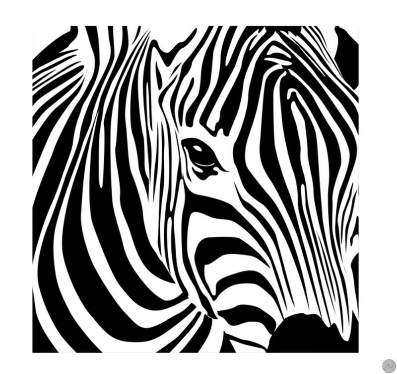 Wild zebra black and white animal canvas artwall and co - Tableaux noir et blanc ...