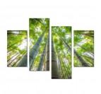 Tableau Multiple Zen Bamboo