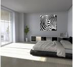 Wild Zebra wall canvas print for a nature interior