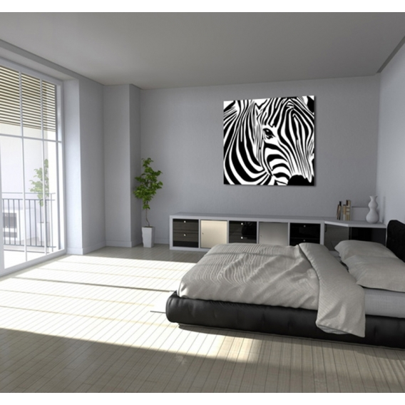 tableau animaux wild z bra. Black Bedroom Furniture Sets. Home Design Ideas