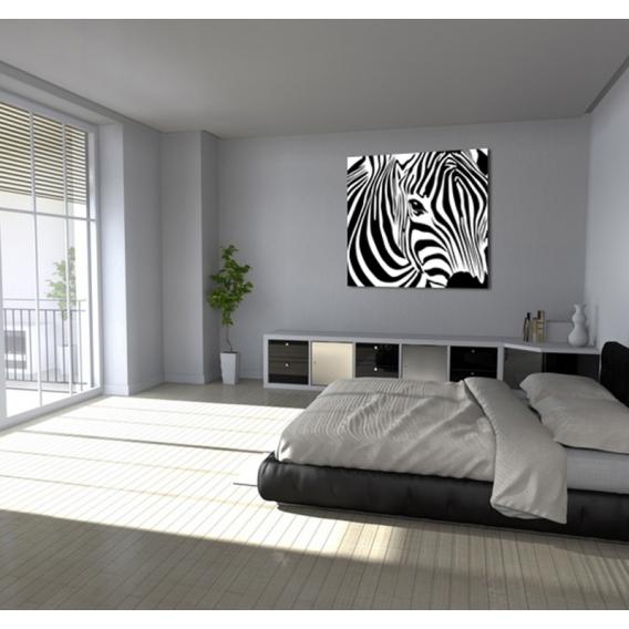Wild Zebra black and white animal canvas