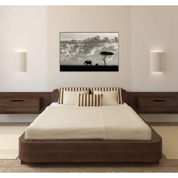 An elephant's Path Contemporary Canvas