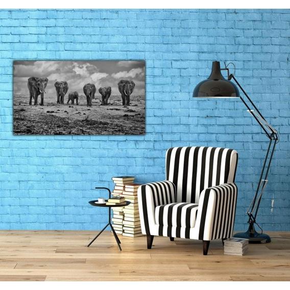 Photo d'Art Originale Groupe d'éléphants