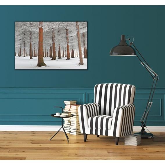 Photo d'art Moderne Forêt Enneigée