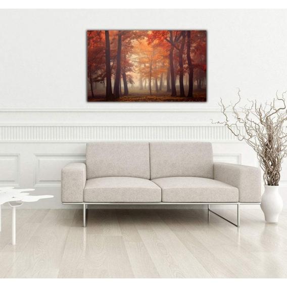 Photo d'Art Paysage Foret d'Automne