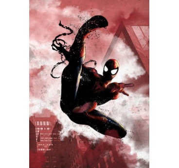 Poster Métal Black Spiderman