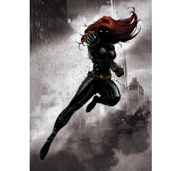 Poster Metal Black Widow