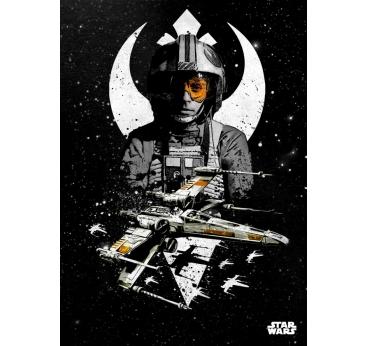 Poster Métal Luke Pilote