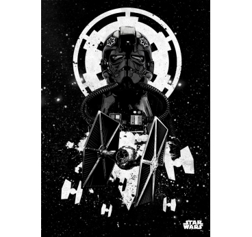 Poster Murale Pilote de l'Empire