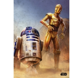 Poster Star Wars Episode 4