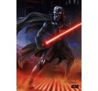 Poster Métal Dark Sith