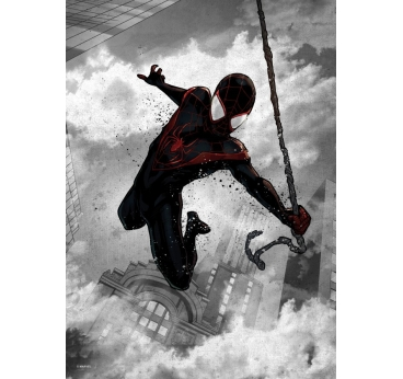 Affiche Murale Black Spiderman