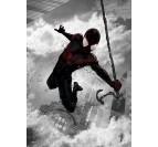Black Spiderman Wall Poster
