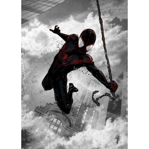 Black Spiderman Wall Poster