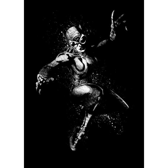 DC Comics Catwoman Poster