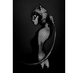 Affiche Murale La Catwoman