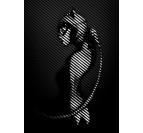 The Catwoman Wall Poster