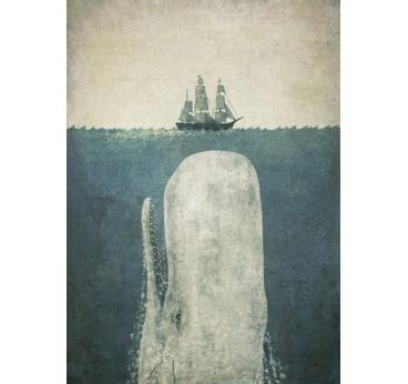 Poster Metal Baleine Blanche