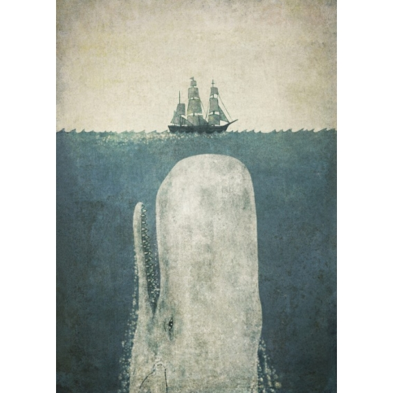 Poster Métal Baleine Blanche