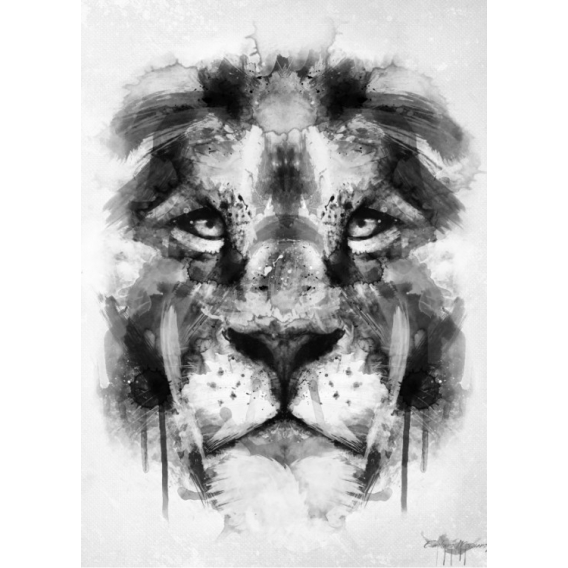 Nature Lion Metal Poster