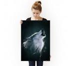 Poster Animal Loup