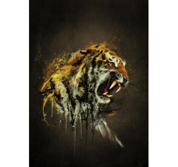 Poster Métal Tigre Féroce