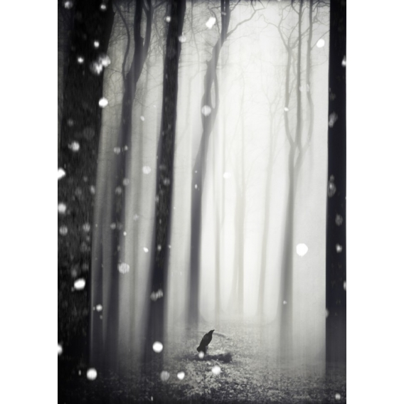 Metal Wall Poster Wintersong