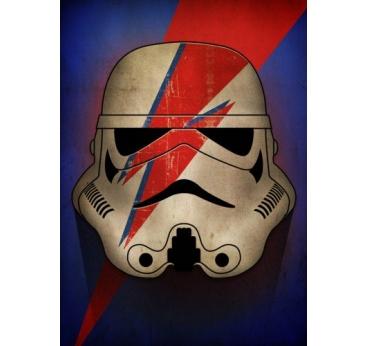 Poster Mural Stormtrooper Ziggy