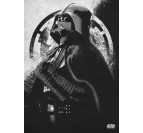 Poster Star Wars Puissance Vador