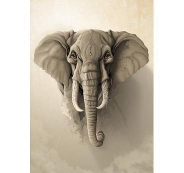 Affiche Métal Saint Eléphant