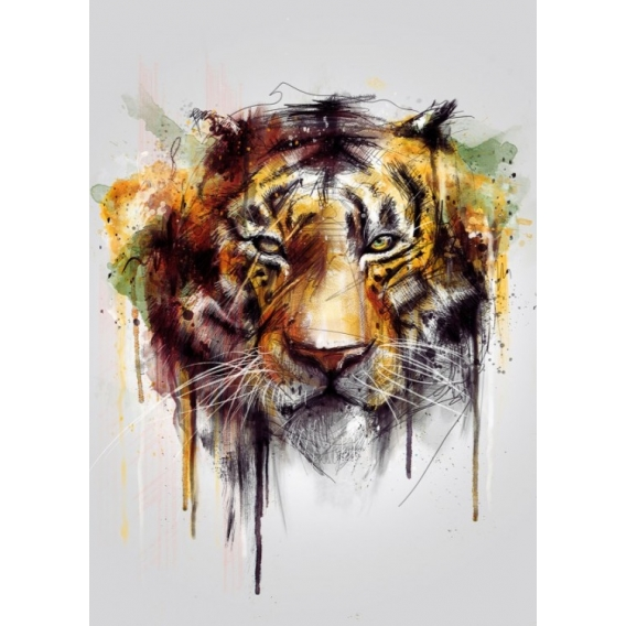 Design Tiger Metal Poster