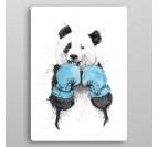 Panda Boxer