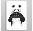 Panda Prison