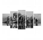 Tableau multiple animal Elephant