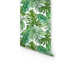 Papier Peint Monstera