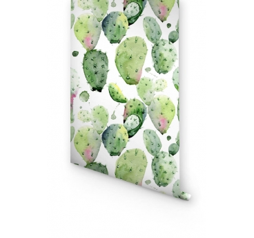 Papier peint cactus aquarelle