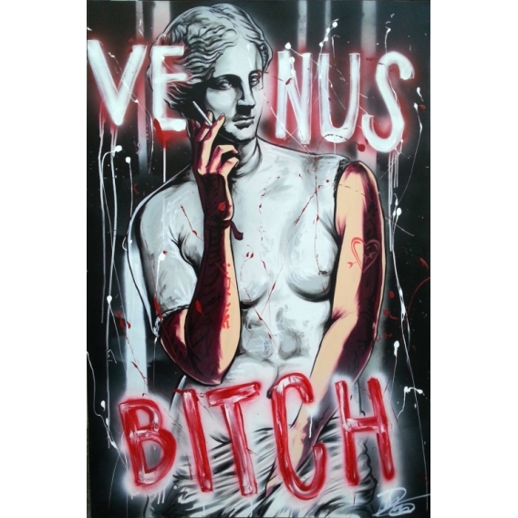 Venus Bitch Canvas