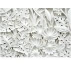 Papier Peint Jardin D'albatres