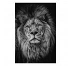 Portrait d'un lion en noir sur un tableau aluminium pour votre décoration murale