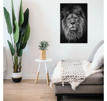 Tableau aluminium en photo d'art d'un portrait de lion dans une déco murale boho