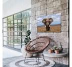 Photo d'art éléphant sur aluminium pour un tableau décoration dans votre salon