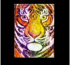 Bubble Tiger Tableau Tendance