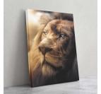 Tableau de lion dans une version lumineuse avec un regard unique pour votre décoration murale