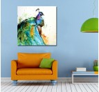 Multicolor Peacock Colorful Art Print